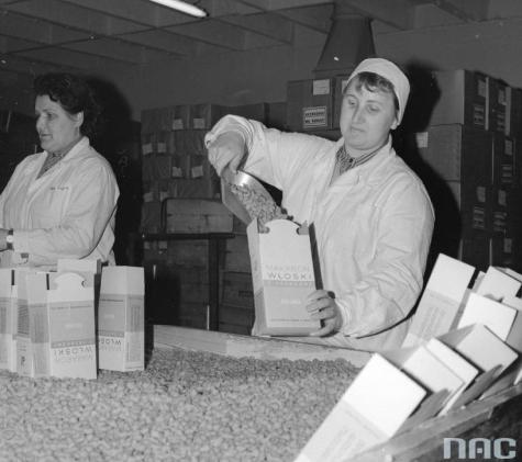 1951 -  Zgodnie z zarządzeniem Ministra Przemysłu Lekkiego, zostaje utworzone przedsiębiorstwo...
